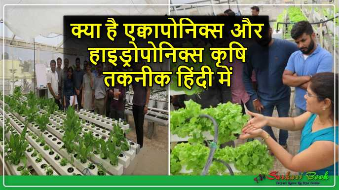 What is aquaponics and hydroponics Agricultural Technique In Hindi