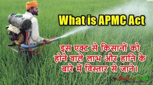 What is APMC Act in Hindi